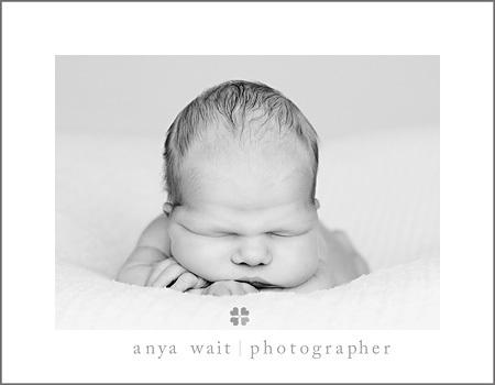 Aurelia_newborn_02bwblog